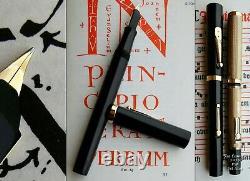 Waterman 56 New York BHR Fountain Pen 1920. 14K F Full Flex Nib. Boxed MINT